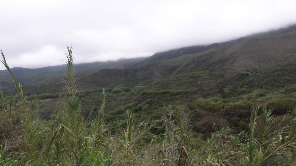 Em alguns trechos, a neblina trazia um efeito especial à paisagem.
