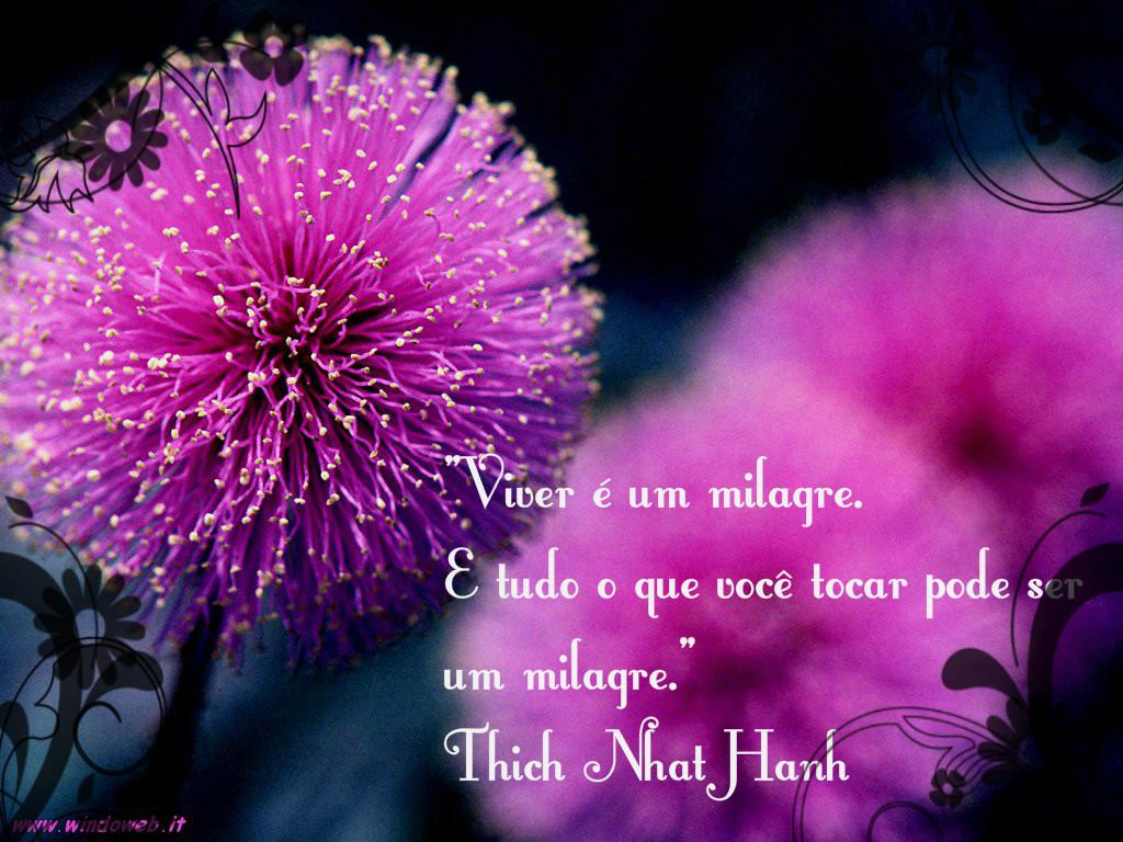 """O monge Thich Nhat Hanh alerta: """"Viver é um milagre. E tudo o que você tocar pode ser um milagre""""."""